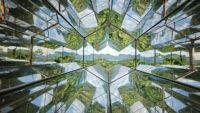 Kaleidoskop Inhotim