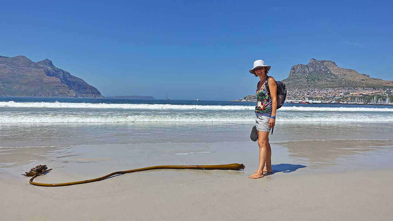 Strand in Hout Bay