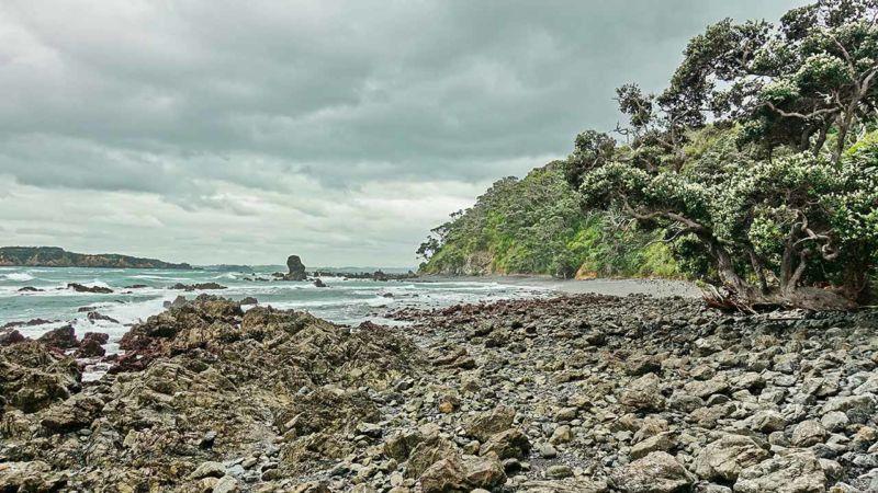 Tawharanui National Park